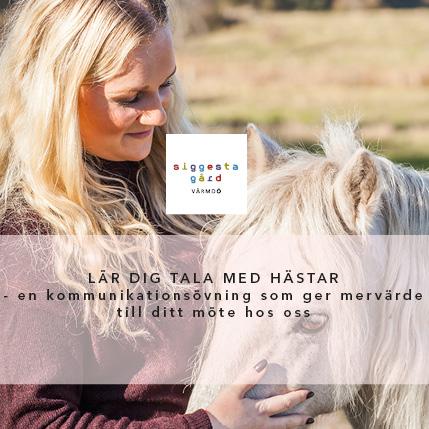 Julbord på Siggesta Gård i VÄRMDÖ | Konferensföretag.se